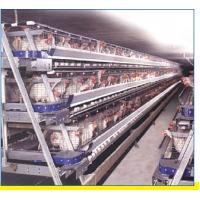 Automatic poultry ventilation system Manufactures