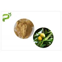 Natural Plant Extract Powder Anti - Inflammatory Mangiferin From Mango Leaf Manufactures