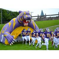 China Purple Inflatable Sports Games Football Tunnel For Event / Advertisement on sale