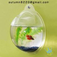 acrylic wall mount fish bowl Manufactures