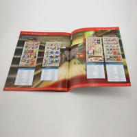 Custom matt/glossy lamination Promotional Color Booklet Printing with glue binding for ads Manufactures