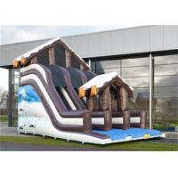 Full Print Commercial Inflatable Slide, Attractive Inflatable Playground Slide With House Design Manufactures