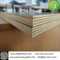 Black film face plywood Manufactures