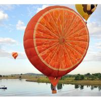 Outdoor Helium Advertising Balloons With Various Kind Cartoon Orange Manufactures