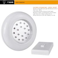 Indoor Warm White Battery Powered Light With Remote Switch 17×4.5CM