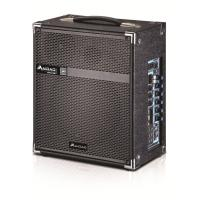 Wireless Microphone Portable PA Speaker System / Active Outdoor Speakers Manufactures