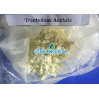 China 10161 34 9 Anabolic Steroids Trenbolone Fast Acting For Body Building on sale