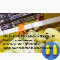 Poultry & Livestock Farming Silver Steel Automatic Broiler Chicken Floor Raising System Manufactures