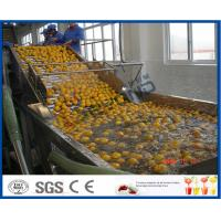 Energy Saving Orange Processing Line with Glass / PET Bottle Filling Machine Manufactures