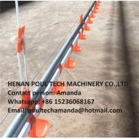 Poultry Farming Silver Steel Automatic Broiler Deep Litter System with Automatic Feeding&Drinking System Manufactures