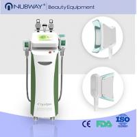 China Amazing result! Cryolipolysis Fat Freeze Slimming Machine including Radio Frequency & Cavitation on sale