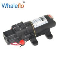 Whaleflo 12v DC 3.1Lpm 70psi agriculture backpack sprayer diaphragm water pump Manufactures