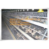 Chicken House Steel Sheet Silver White Automatic Small Chicken Cage for Chicken Shed with Feeding&Drinking System Manufactures