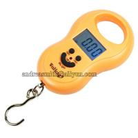 ABS Plastic Hanging Gram Scale , Units Conversion Handheld Luggage Scale Manufactures