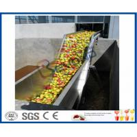 Fruit Juice Processing Machines , Apple Processing Machine For Juice Making Manufactures