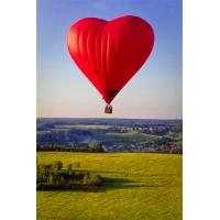 Commercial Outdoor Inflatable Hot Air Balloon Flying , Large Hot Air Balloon Rides Near Me Manufactures