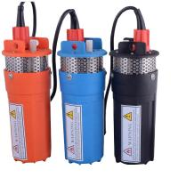 Whaleflo deep well 12v/24v DC submersible solar brushless motor irrigation water pump maxi lift 70M Manufactures