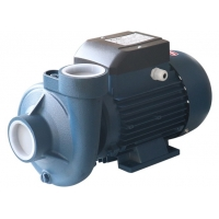 0.75HP 0.55KW Single Phase Centrifugal Water Pump For Farm Irrigation Manufactures