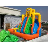 PVC Tarpaulin Inflatable Water Slide / Inflatable Water Park Games Manufactures