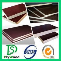film faced plywood use for construction Manufactures