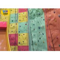 Custom Plastic  Backyard Rock Climbing Wall , Kids Outdoor Rock Climbing Wall