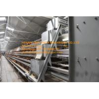 Quality New Steel Sheet Silver White Chicken Farm Automatic Egg Hen Chicken Cage Equipment with 90-200 Chickens for sale