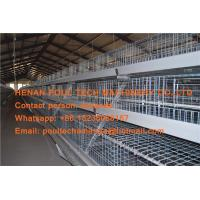 Quality Poultry Equipment Steel Sheet Silver Automatic Broiler Chicken Cage System with for sale