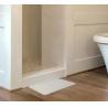 CE/SGS Certificate Hot sale Natural Non Slip Diatomaceous Earth Mat New Super Quick Dry Diatomite Bath Mat Manufactures