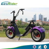 EEC/CE/Rohs Certification 1000W 25km/h Two Wheel Electric Scooter Ebike newest Ecorider scooter for Adult Manufactures