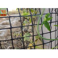 HDPE Garden Climbing Plant Support Netting , Garden Mesh Netting , Garden Plastic Mesh Fencing , Black Color Manufactures