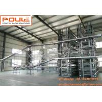 Poultry Chicken Farm Hot Galvanized Silver  H Frame Battery Layer Cage & Chicken Coop Equipment System with 84-224 Birds Manufactures