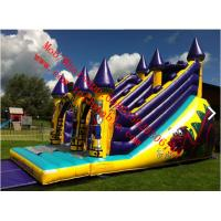 Dragons Lair Inflatable Slide Manufactures