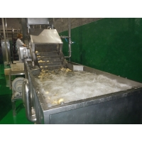 SUS304 10TPH Fruit Vegetable Washing Machine Stepless Shift Manufactures