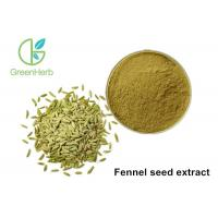 High Pure Natural Plant Extract Powder Fennel Seed Extract Powder Manufactures