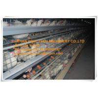 Silver Galvanized Steel Cage Battery Cage/Coop Hybrid Chicken Cage/Coop for Poultry&Livestock Farming Manufactures