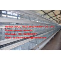 New Steel Sheet Cage Chicken Farming A Type Battery Chicken Cage & Hen Cage with 90-200 Birds in Poultry House Manufactures