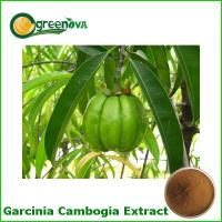 2016 new product pure plant for losing weight - Garcinia Cambogia Extract powder Manufactures