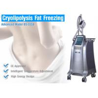 Cryolipolysis Fat Freeze Slimming Machine Manufactures