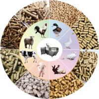 Full Automatic Dog Food Production Machine Overload Overcurrent And Overheat Manufactures