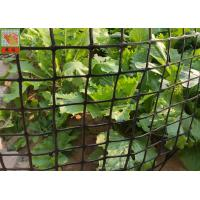 Heavy Duty Garden Fence , Garden Mesh Netting , Black Color , HDPE Materials , 50 CM High Manufactures