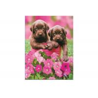 Cartoon 3D Lenticular Pictures PET for Kid's Room Decoration Manufactures
