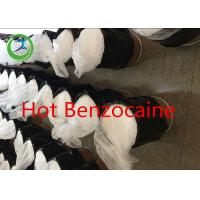 Local anesthetic Benzocaine Hcl/Benzocaine for pain killer CAS 94-09-7 Manufactures