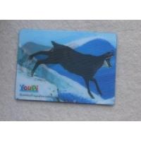 3D Fridge Magnet Manufactures