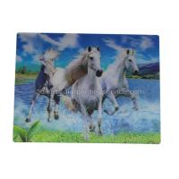 UV Offset Printing Lenticular 3D Fridge Magnets For Gift , Printed Fridge Magnets Manufactures