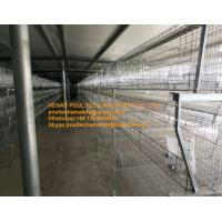 Buy cheap Poultry Farm Silver Color Hot-dip Galvanized Sheet Simple H Type Battery Broiler Cage System with 108-144 Birds from wholesalers