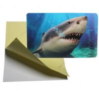 cheap price 3d lenticular sticker pp pet flip effect lenticular sticker printing with the adhesive on the backside Manufactures
