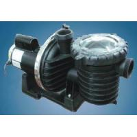 China Swimming Pool Pumps 2 Speed Pool Equipments (SCP-E Series) on sale