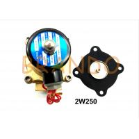 2W250 Solenoid Valve Diaphragm For Industrial Water Treatment / Wastewater Discharge Manufactures