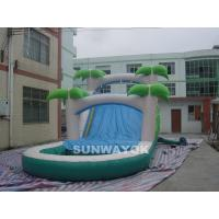 Custom  Water Park Inflatable Water Slide With Pool For Children / Adults Manufactures