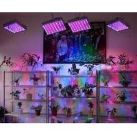 LED Panel indoor growing Light 45W also 50W, 90W, 120W ,300W ,600W or Customized Available Manufactures